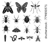 different kinds of insects... | Shutterstock .eps vector #779850571