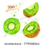 watercolor set of half and... | Shutterstock . vector #779908561