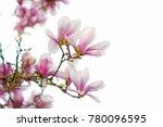 macro closeup of abundant soft...   Shutterstock . vector #780096595