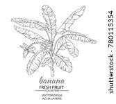 banana  tree vector... | Shutterstock .eps vector #780115354