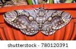 Small photo of The moth of Borneo. Brahmaea Hearseyi (Brahmin Moth)