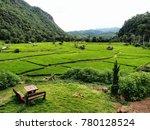Green Rice Field Season At Pai...