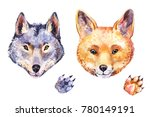 cute watercolor fox and wolf....   Shutterstock . vector #780149191