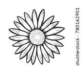 hand drawn camomile flower ... | Shutterstock .eps vector #780162901