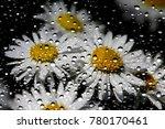 flowers through the window... | Shutterstock . vector #780170461