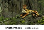 Jaguar In Jungle On Tree Trunk