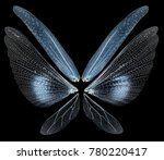 insect wings isolated on black... | Shutterstock . vector #780220417