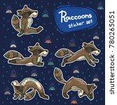 cute hand drawn tribal racoon... | Shutterstock .eps vector #780265051