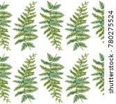 botanical illustration.... | Shutterstock . vector #780275524