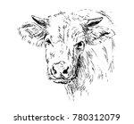 hand sketch head cow. vector... | Shutterstock .eps vector #780312079