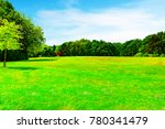 field trees and blue sky | Shutterstock . vector #780341479