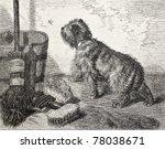 Old Illustration Of A Dog Near...