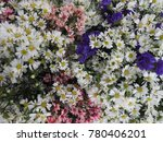 colorful blooms of cutter... | Shutterstock . vector #780406201