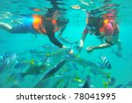 Diver Feeding Fishes In Tioman...