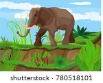 elephant in the savannah ... | Shutterstock .eps vector #780518101