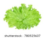 salad leaf. lettuce isolated on ... | Shutterstock . vector #780525637