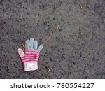 The Lost Glove Of A Small Child....