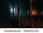 scary park in the autumn night   Shutterstock . vector #780631531