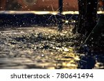 magical moment. crystal drops... | Shutterstock . vector #780641494