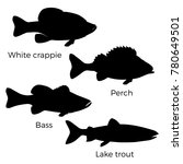 silhouettes of freshwater fish  ... | Shutterstock .eps vector #780649501