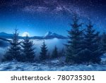 winter valley covered with... | Shutterstock . vector #780735301