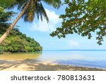 beautiful tropical beach with... | Shutterstock . vector #780813631