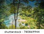 futaleufu river at patagonia ... | Shutterstock . vector #780869944