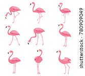 Cartoon Pink Flamingo Vector...