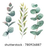 watercolor hand painted set... | Shutterstock . vector #780926887