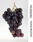 red wine grapes. | Shutterstock . vector #78098536