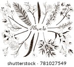 collection of floral design... | Shutterstock .eps vector #781027549