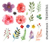 floral set. collection with... | Shutterstock . vector #781045561