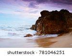 beach in asia   a beach is a... | Shutterstock . vector #781046251