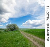 rural road under cloudy sky with tree - stock photo