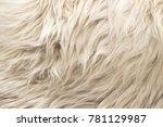 white wool texture background.... | Shutterstock . vector #781129987