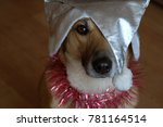 a dog in a new year's cap | Shutterstock . vector #781164514