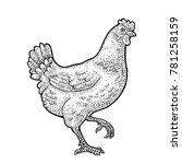 walking chicken. hand drawn in... | Shutterstock .eps vector #781258159