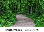 A Trail Through A Ontario...