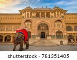 decorated elephant in front of... | Shutterstock . vector #781351405