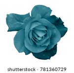flower turquoise rose  on a... | Shutterstock . vector #781360729