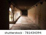 crosses the corridor in the... | Shutterstock . vector #781434394