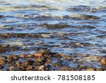 sea water   stones background  | Shutterstock . vector #781508185
