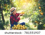 farmer orange lady the... | Shutterstock . vector #781551937