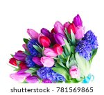 hyacinth and tulips flowers | Shutterstock . vector #781569865