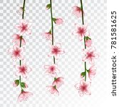 spring bloom branch with pink... | Shutterstock .eps vector #781581625