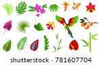 tropical plant and bird icons...   Shutterstock .eps vector #781607704