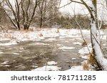 duck winter river | Shutterstock . vector #781711285