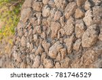 wall made of yellow rock... | Shutterstock . vector #781746529