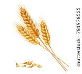 realistic yellow ripe spikelets ... | Shutterstock .eps vector #781978525