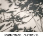 tree leaves shadow on wall... | Shutterstock . vector #781985041